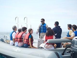 Photo of the Novurania Yacht Tenders