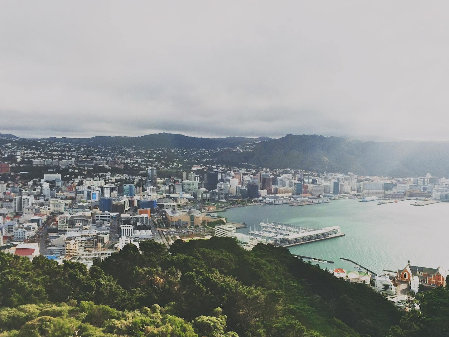 A view of Wellington from Mount Victoria